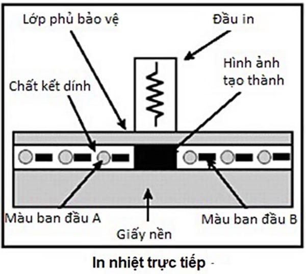 Cấu tạo và nguyên lý hoạt động của máy in hóa đơn